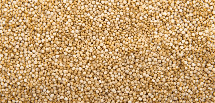 Quinoa: Tudo o que você precisa saber